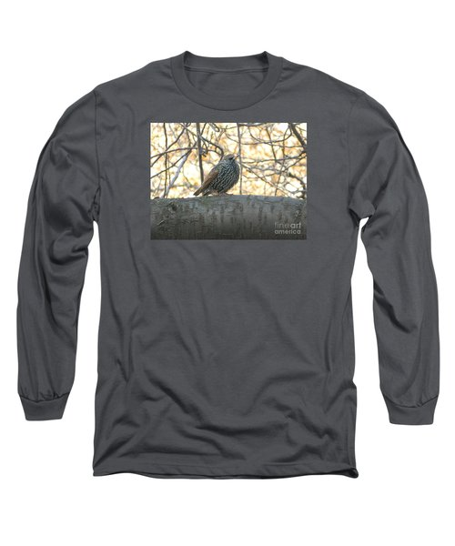 Long Sleeve T-Shirt featuring the photograph European Starling by Emmy Marie Vickers