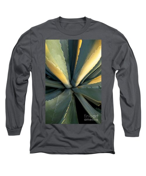 Evening Agave Long Sleeve T-Shirt by Ellen Cotton