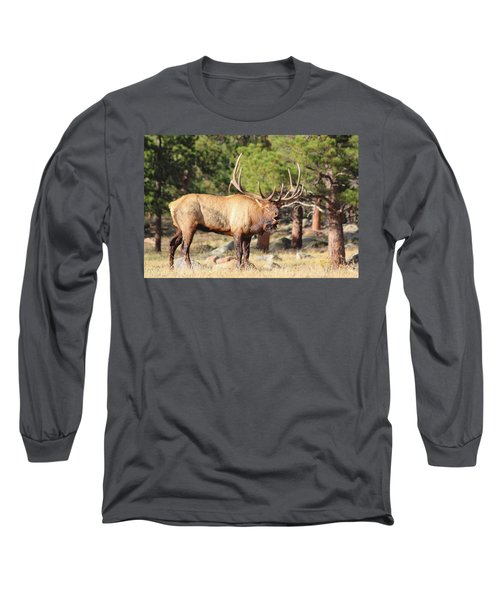 Evening Roundup Long Sleeve T-Shirt