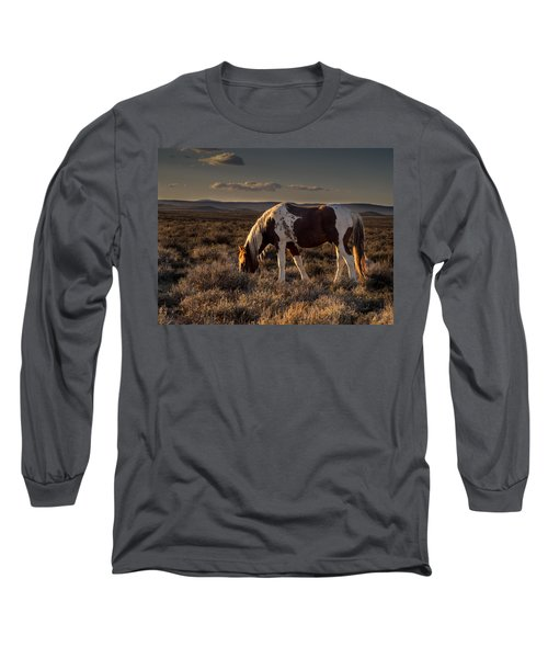 Evening Solitude In Sand Wash Basin Long Sleeve T-Shirt