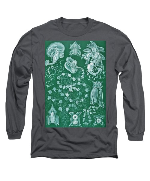 Examples Of Siphonophorae Long Sleeve T-Shirt