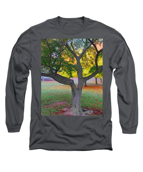 Long Sleeve T-Shirt featuring the photograph Fall Color by Lisa Phillips