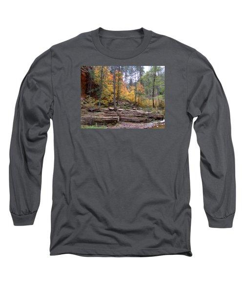 Fall Colors 6463-02 Long Sleeve T-Shirt by En-Chuen Soo