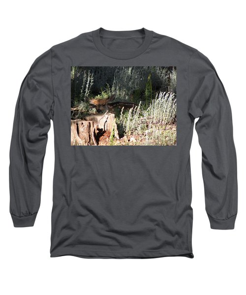 Fawn Front Yard Divide Co Long Sleeve T-Shirt