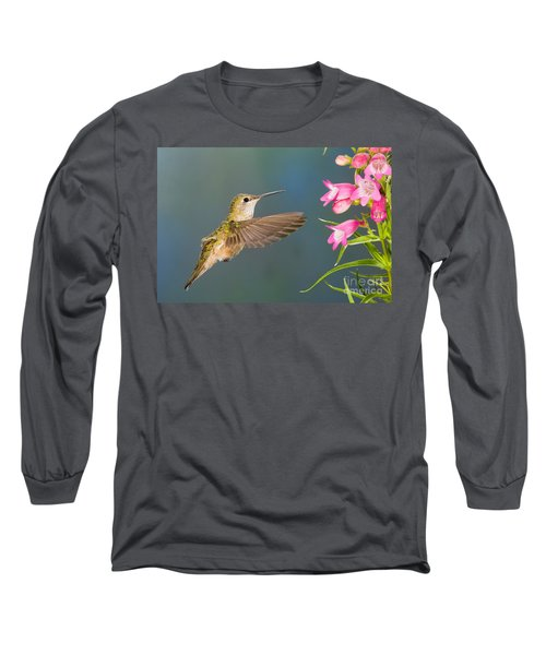 Female Broad-tailed Hummingbirds Long Sleeve T-Shirt