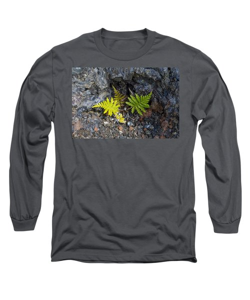 Ferns In Volcanic Rock Long Sleeve T-Shirt