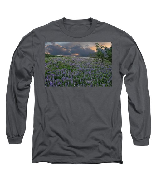 Field Of Lupine Long Sleeve T-Shirt by Ed Hall