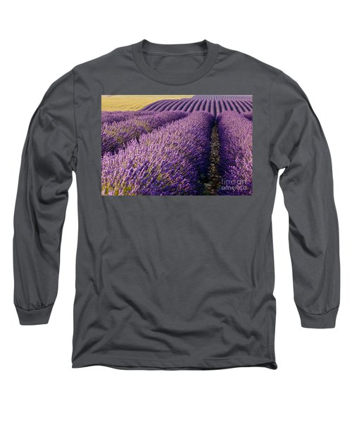 Fields Of Lavender Long Sleeve T-Shirt