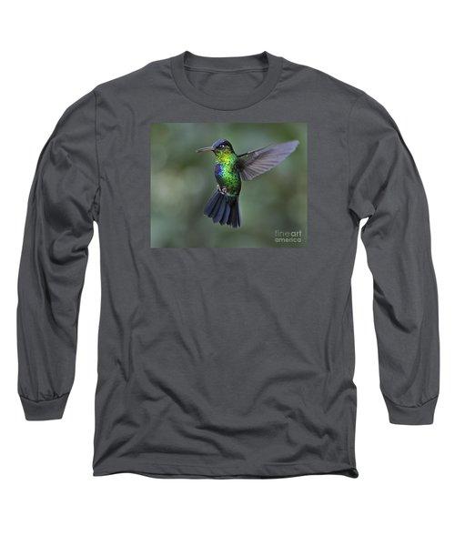 Fiery-throated Hummingbird..  Long Sleeve T-Shirt by Nina Stavlund