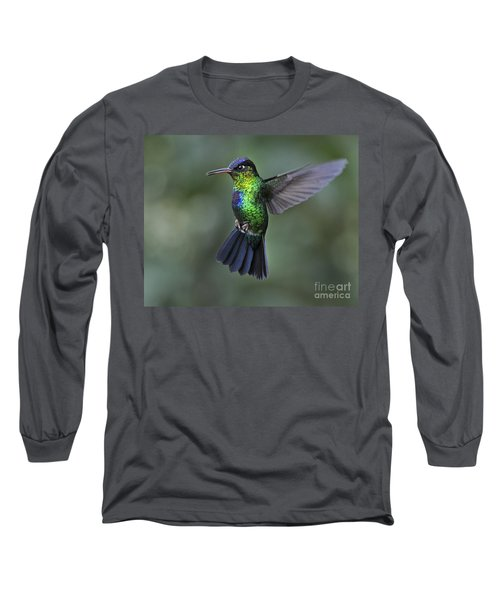 Fiery-throated Hummingbird..  Long Sleeve T-Shirt