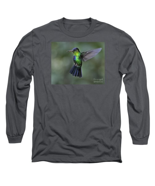 Fiery-throated Hummingbird..  Long Sleeve T-Shirt