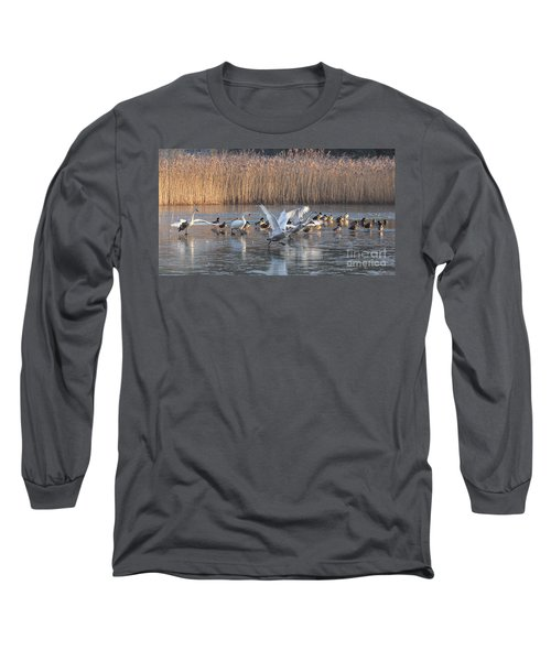 Flight From Ice Long Sleeve T-Shirt