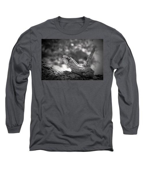 Florida Keys Driftwood Long Sleeve T-Shirt by Bradley R Youngberg
