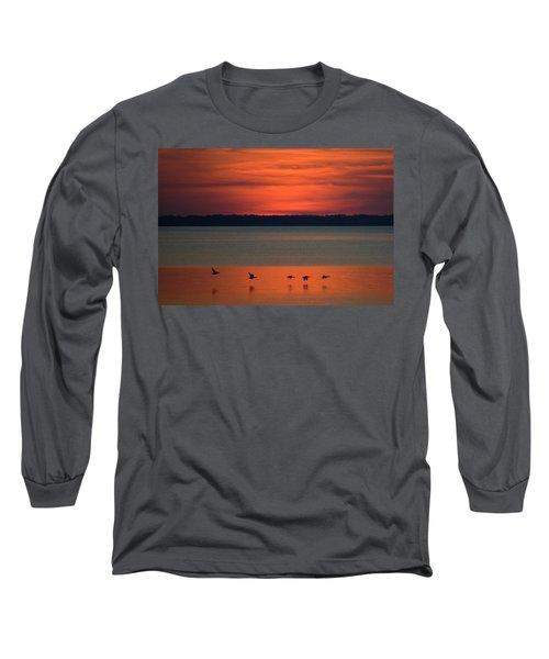 Flying North Long Sleeve T-Shirt