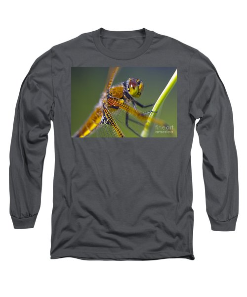 Four Spotted Chaser Long Sleeve T-Shirt