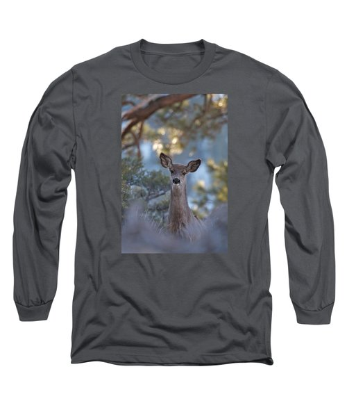 Framed Deer Head And Shoulders Long Sleeve T-Shirt
