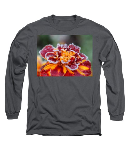 French Marigold Named Durango Red Outlined With Frost Long Sleeve T-Shirt by J McCombie