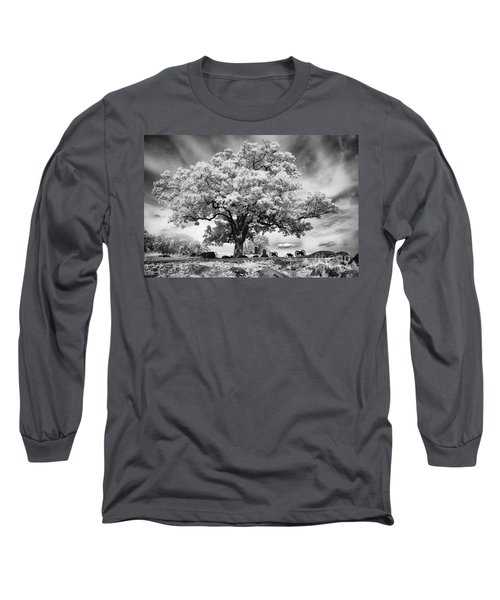 From The Top Of Devil's Den Long Sleeve T-Shirt