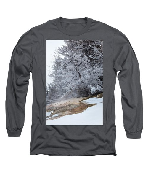 Frozen Tree Long Sleeve T-Shirt