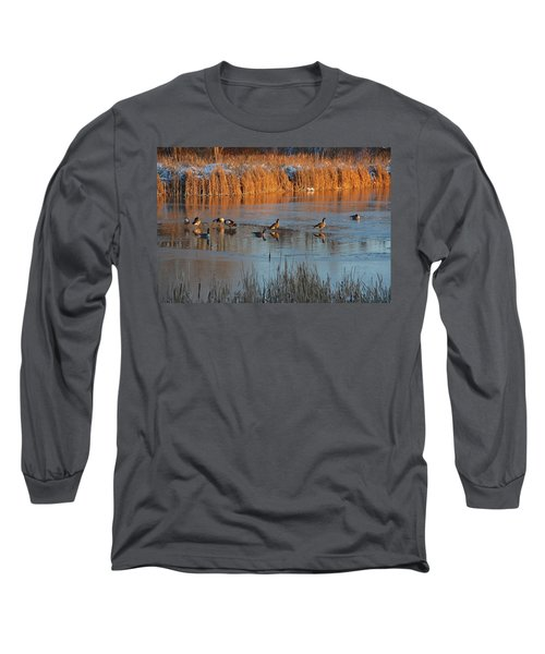 Geese In Wetlands Long Sleeve T-Shirt