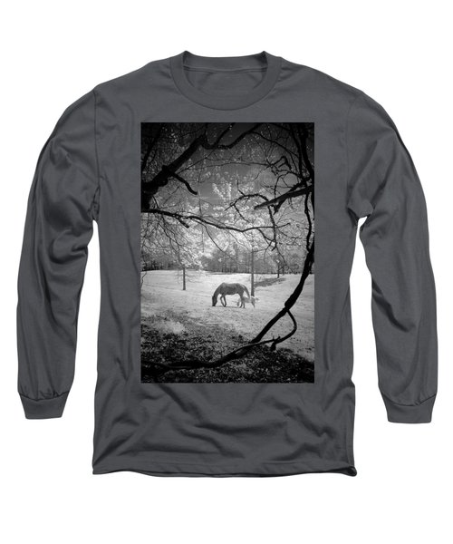Georgia Horses Long Sleeve T-Shirt by Bradley R Youngberg