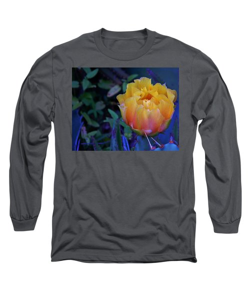 Get To The Point Long Sleeve T-Shirt by Warren Thompson