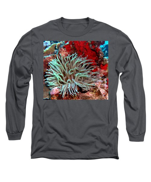 Giant Green Sea Anemone Against Red Coral Long Sleeve T-Shirt by Amy McDaniel