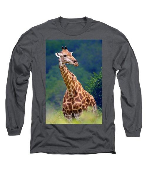 Giraffe Portrait Closeup Long Sleeve T-Shirt