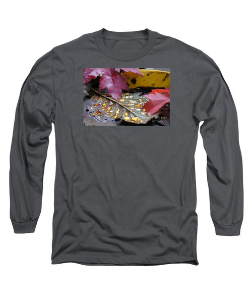 Midas Wept Long Sleeve T-Shirt by Stanza Widen