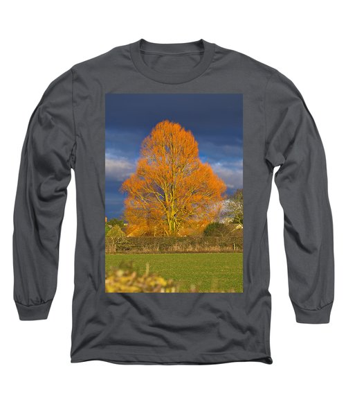 Golden Glow - Sunlit Tree Long Sleeve T-Shirt