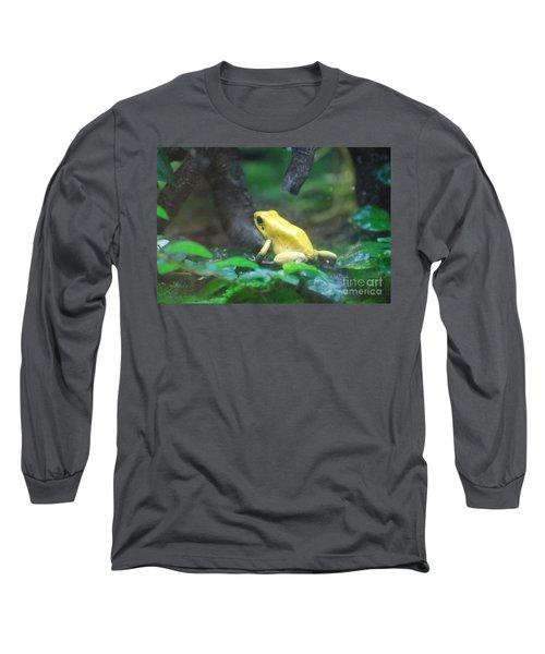 Golden Poison Frog Long Sleeve T-Shirt by DejaVu Designs