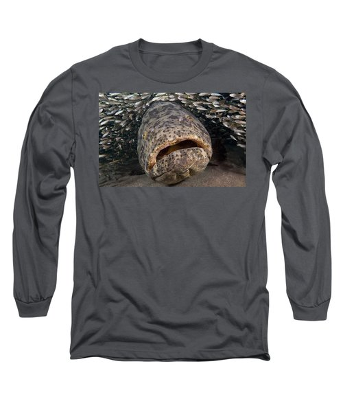 Goliath Grouper Long Sleeve T-Shirt