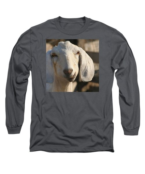 Goofy Goat Long Sleeve T-Shirt by Art Block Collections