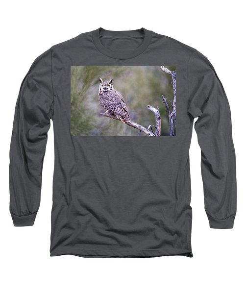 Long Sleeve T-Shirt featuring the photograph Great Horned Owl by Dan McManus