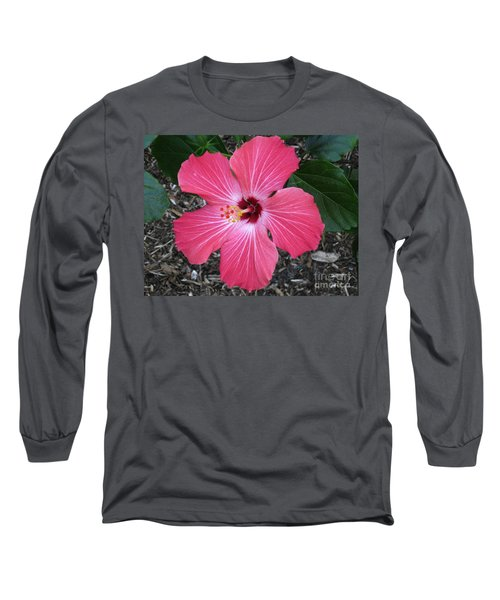 Long Sleeve T-Shirt featuring the photograph Greetings From Florida by Oksana Semenchenko