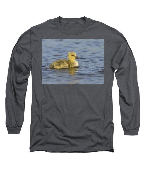 Greylag Goose Gosling Zeeland Long Sleeve T-Shirt