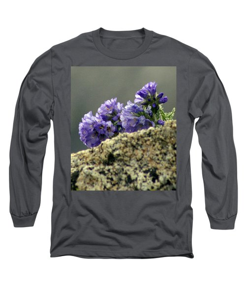Long Sleeve T-Shirt featuring the photograph Growing In Granite by Jeremy Rhoades