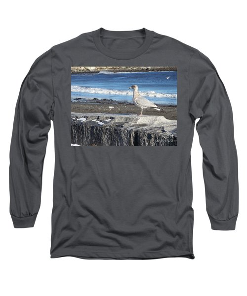 Seagull  Long Sleeve T-Shirt by Eunice Miller