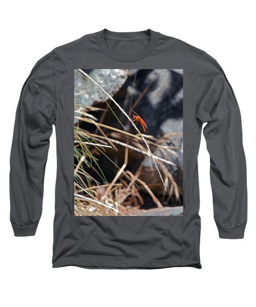 Long Sleeve T-Shirt featuring the photograph Hanging On by Michele Myers