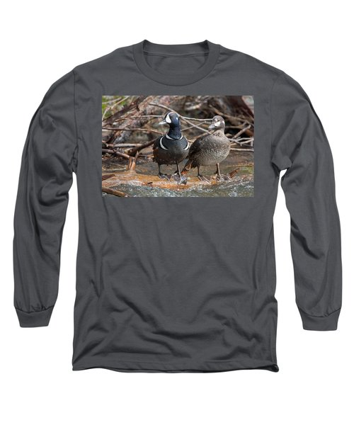 Long Sleeve T-Shirt featuring the photograph Harlequin Pair by Jack Bell