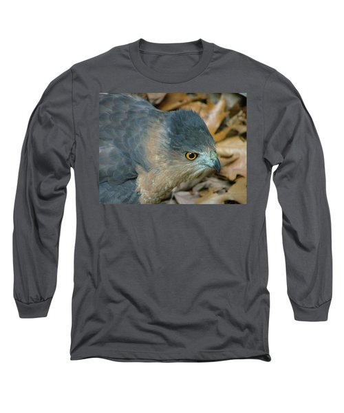 Hawk Eyes Up Close Long Sleeve T-Shirt