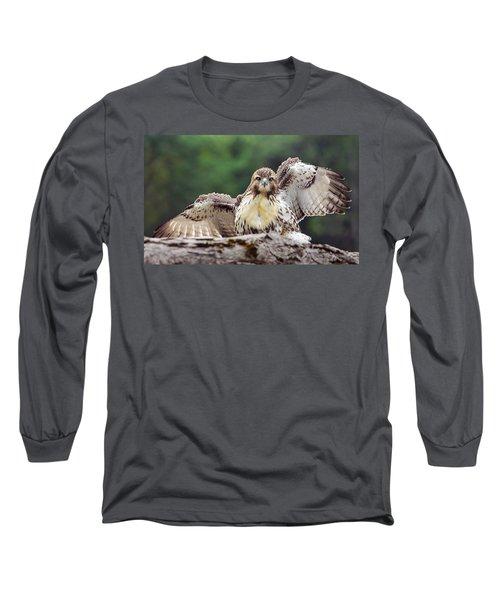 Hawkeyes Long Sleeve T-Shirt