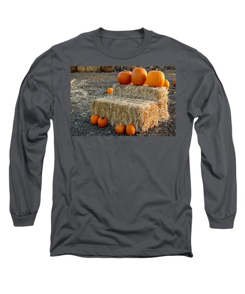 Hay Steps Long Sleeve T-Shirt