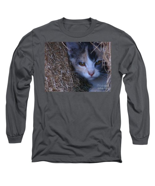 Haystack Cat Long Sleeve T-Shirt