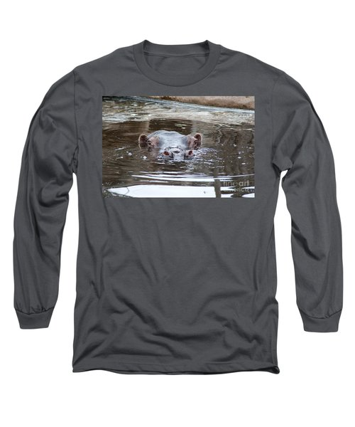 Hide And Seek Long Sleeve T-Shirt by Ray Warren