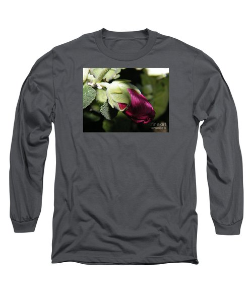 Long Sleeve T-Shirt featuring the photograph Hollyhock Shadows by Ann E Robson