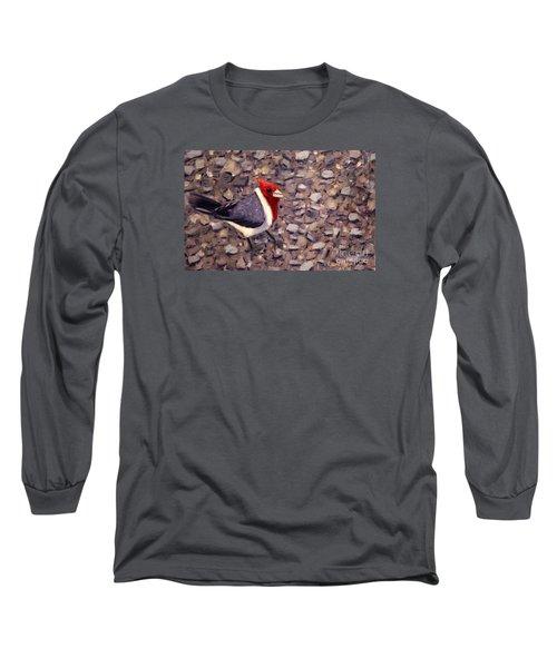 Home Turf Long Sleeve T-Shirt