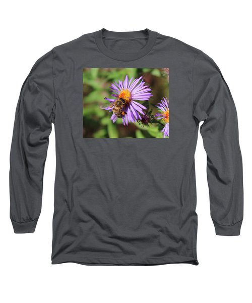 Honeybee On Purple Wild Aster Long Sleeve T-Shirt by Lucinda VanVleck