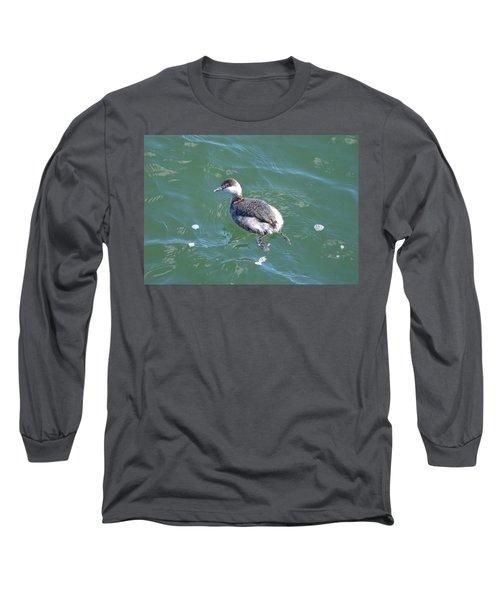 Horned Grebe Long Sleeve T-Shirt by James Petersen