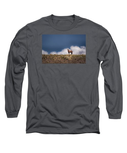 Horse In The Clouds  Long Sleeve T-Shirt
